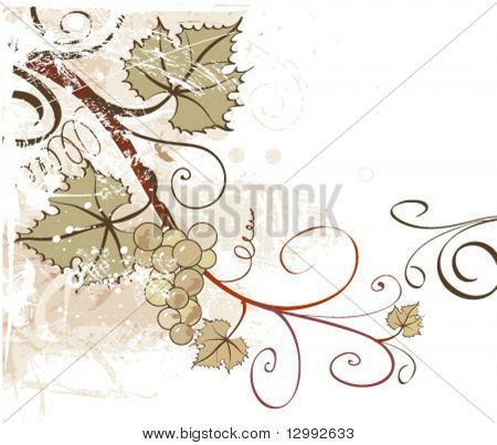 Grapes. Vector grunge floral background. See similar pictures in my portfolio.