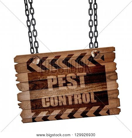 Pest control background, 3D rendering, wooden board on a grunge
