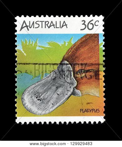 AUSTRALIA - CIRCA 1986 : Cancelled postage stamp printed by Australia, that shows Platypus.