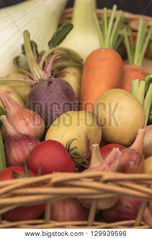 Composition with assorted raw organic vegetables close-up