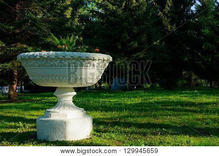 retro Flowerpot isolated with flowers in the park with pine trees background