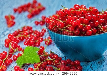 Redcurrant red currant berries  in bowl on kitchen table