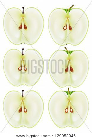 Set of illustrations of half of the Apple in different views