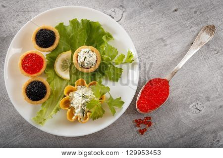 Tartlets filled with black caviar and cheese and dill salad on white plate and leaf against silver rustic wooden background with a silver spoon full of caviar horizontal top view