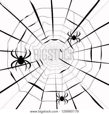 Spiders On A Web Pattern. Vector Illustration