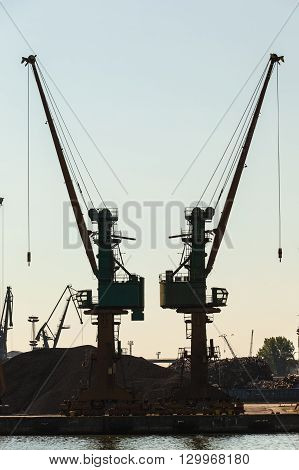 Cranes In Morning Harbour.
