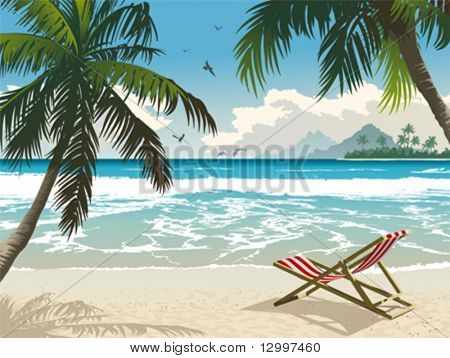Hawaii beach. Vector illustration of the tropical beach.