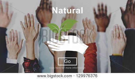 Natural Plants Nature Environment Word Concept