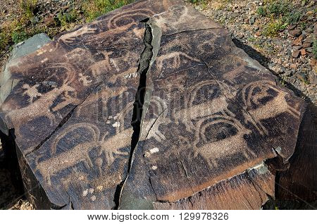 Ancient Painting Of Animals At The Rock