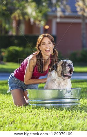A beautiful young woman washing her pet dog, a bulldog, outside in a metal tub