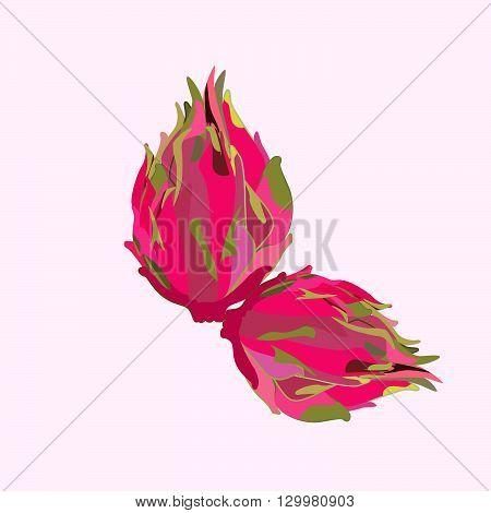 Pitaya or Dragon Fruit isolated against white background