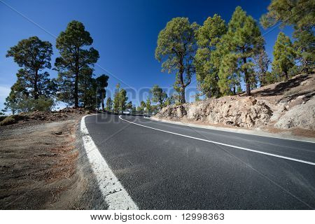 Mountain road, Canary Island Tenerife, Spain