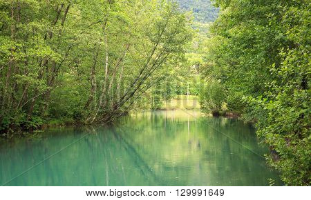 View of the river in the site of Palù di Livenza Pordenone. Italy