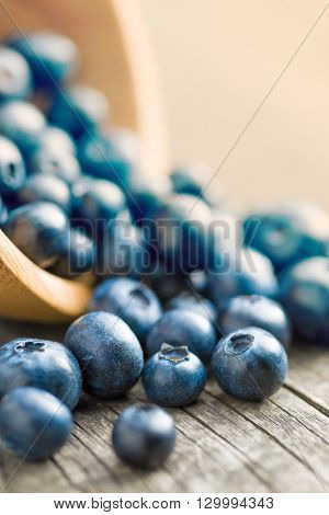 Tasty blueberries fruit on old wooden table. Blueberries are antioxidant organic superfood.
