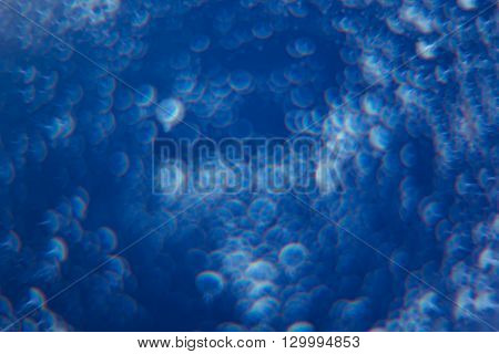 Abstract deep blue background with white circles. Background. Texture.