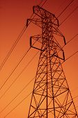 stock photo of power lines  - power lines in the sunset  - JPG