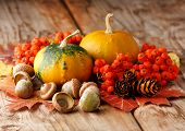 picture of fall leaves  - Harvested pumpkins with fall leaves - JPG