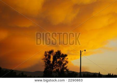 Forest Fire In Montana Summer 2007