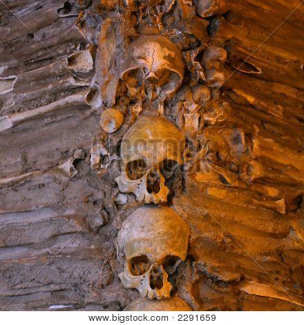 Stacked Human Bones