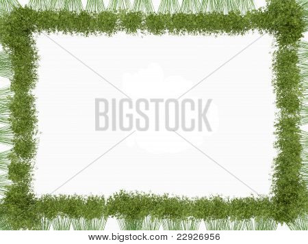 Bamboo Frame Isolated Over White