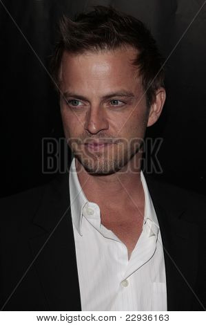 LOS ANGELES - NOV 1: Carmine Giovinazzo at the CSI NY 100th episode party at the Edison Downtown, Los Angeles, California on November 1, 2008