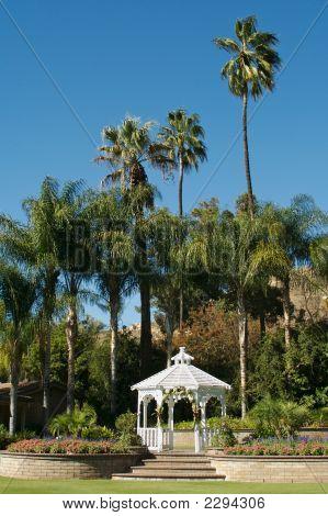 Wedding Gazebo And Palm Trees