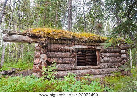 Velho tradicional log cabin apodrecendo na taiga Yukon