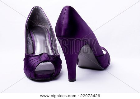 Elegant Expensive Women Shoes