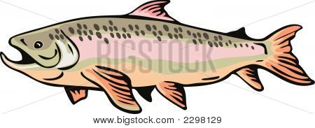 Speckled Brown Trout