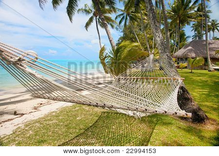 Lazy in a hammock at the tropical vacation