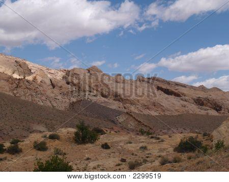 Utah Reef