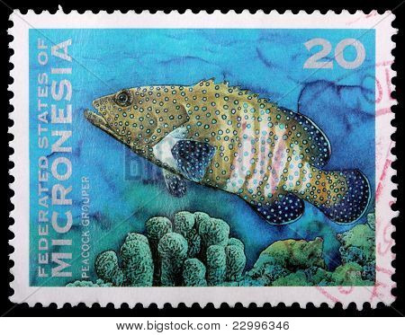 A 20-cent Stamp Printed In The Federated States Of Micronesia