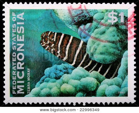A 1-dollar Stamp Printed In The Federated States Of Micronesia