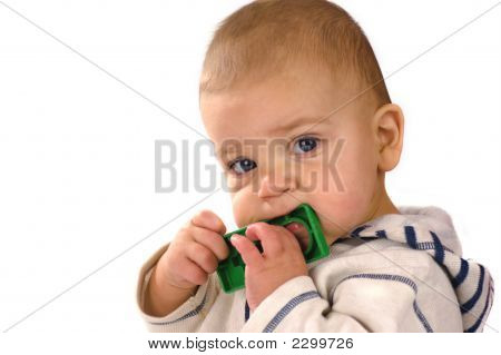 Baby Nibbling Toy
