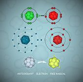 Antioxidant And Free Radical Molecules Or Atoms Vector Set An Illustration Of A Way How Antioxidant  poster