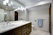 Elegant Bathroom With Espresso Double Vanity poster