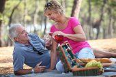 Постер, плакат: Пожилой пары пользуются пикник