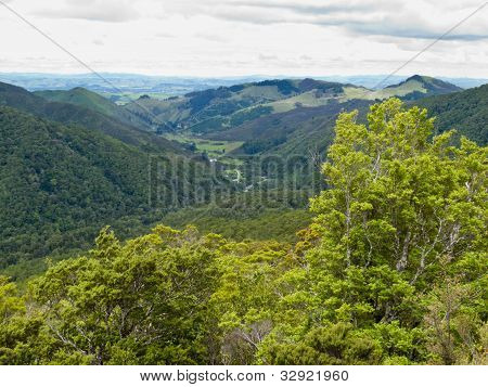 Tararua Range on North Island of New Zealand