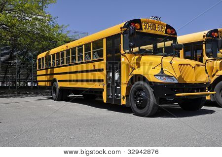 One Yellow School Bus