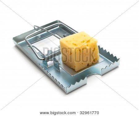 Metall Mousetrap