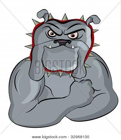 Bull Dog Posing