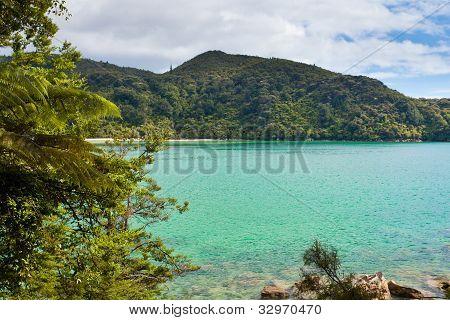 Tranquil bay in Abel Tasman NP, New Zealand