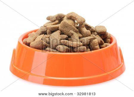 dry dog food in orange bowl  isolated on white
