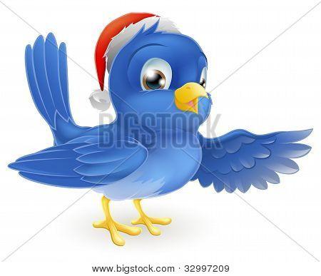 Christmas Santa Hat Pointing Bluebird