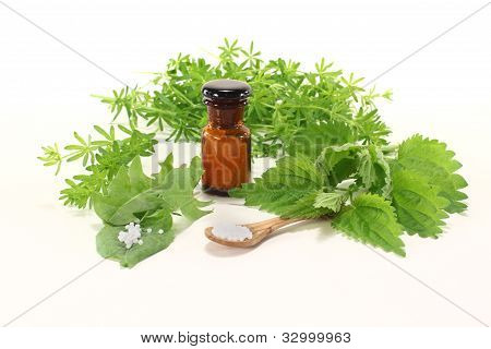 Homeopathy With Apothecary Jar