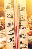 Cold Autumn Weather - 10 Degrees Celsius. Thermometer In The Autumn Cold Weather In The Leaves Shows poster