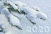 Winter, Christmas Or New Year Greeting Card Or Calendar Cover Template With Green Snow-covered Fir B poster