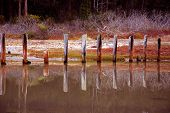 stock photo of mendocino  - Old posts at the beach near Mendocino - JPG