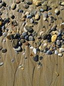 Wet Sea Pebbles On The Wet Sand, Beach Background poster