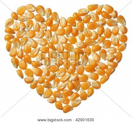 Heart Of Popcorn Kernels Isolated On White Background